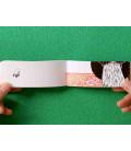 Neko no aisatsu (Flip-Book Series: In a Kitten' s Way of Greeting) por Harumin Asao