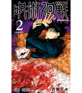 Jujutsu Kaisen Vol. 2 (Sorcery Fight)