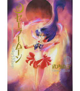 Sailor Moon Vol. 3 Kanzenban Edition